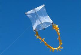 Genki Kite R2F - White