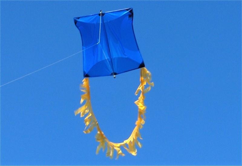 Genki Kite R2F - Blue