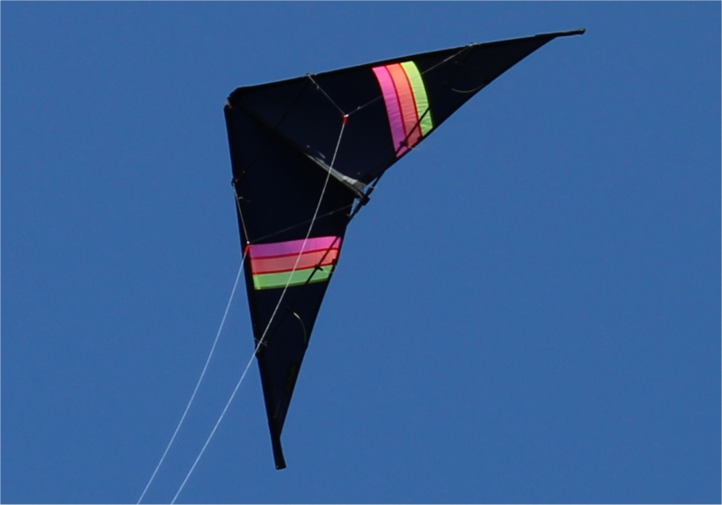 Black Stripe R2F + Power Grips