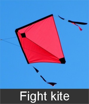 fight kite