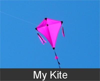 My Kite eenlijns vlieger DFA