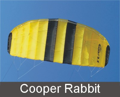 Cooper Rabbit