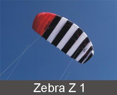 Zebra Z1