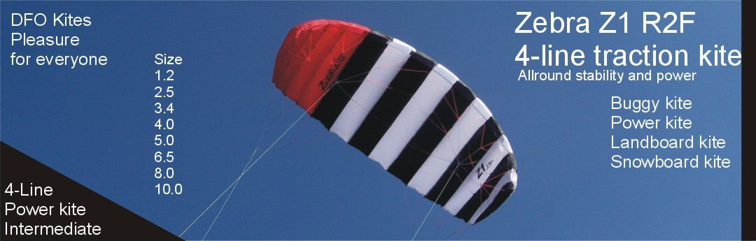 Zebra Z 1