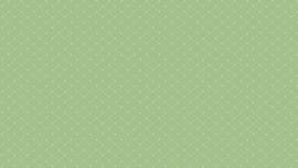 Bijoux basic Andover - Pyramid Wintermint  8704G