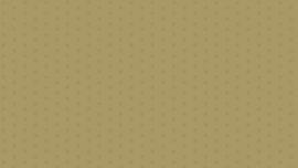 Quiltstof Bijoux basic Andover - Sol Peanut 8703N
