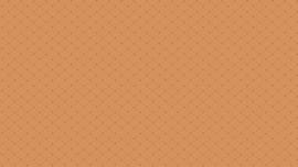 Bijoux basic Andover - Pyramid Sweet Patato 8704O