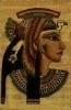 1 kg emmer Cleopatra lichaamspakking