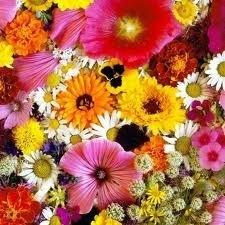 1 ltr. Opgietconcentraat Flowerpassion