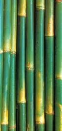 20 ml Bamboe parfum