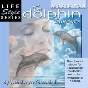 The Dolphin Expierence