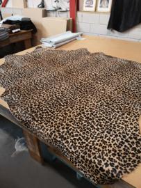 Leopard  koeienhuid