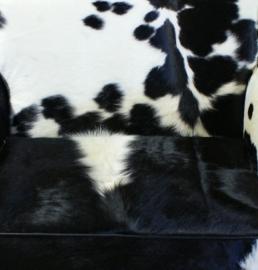 Zwart/wit koeienhuid