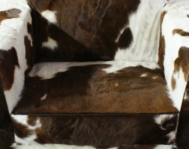 bruin/wit koeienhuid