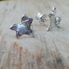 Silver earrings hedera - Zilveren oorbellen klimop