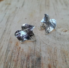 SIlver earrings hedera - Zilveren oorbellen klimop (K1)
