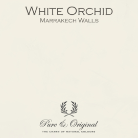 Marrakech Walls - White Orchid