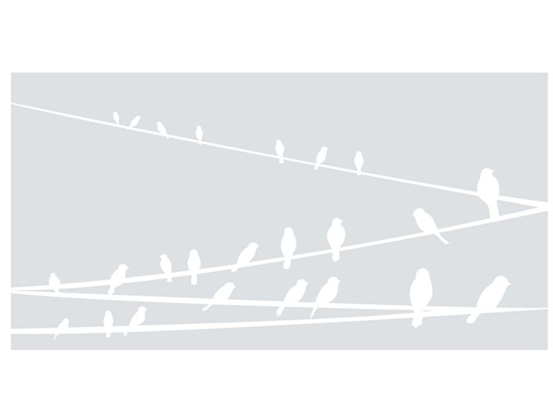 Raamfolie Vogeltjes