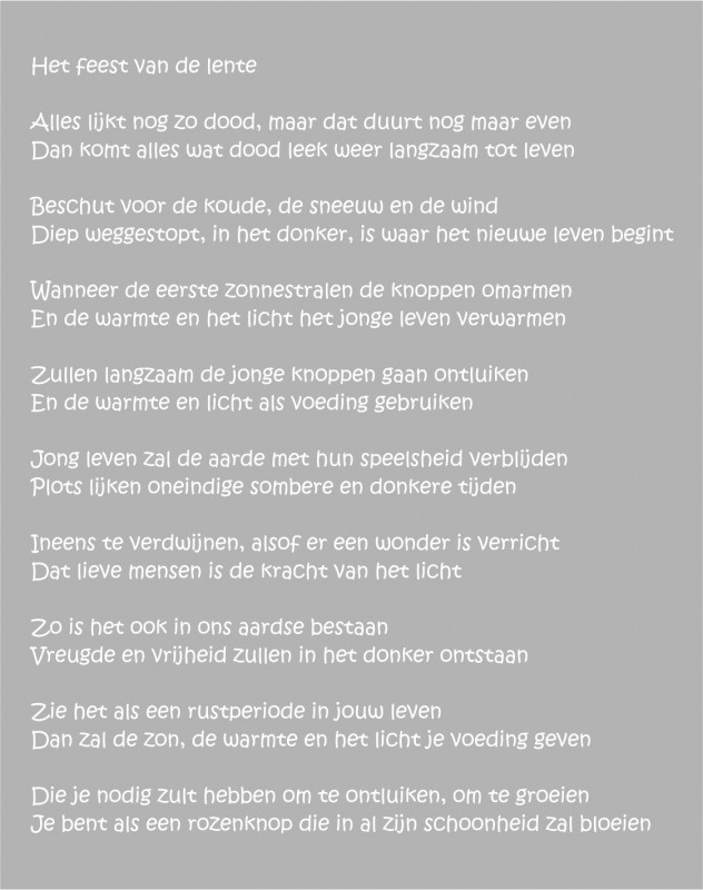 Lente Gedicht Raam Raamfolie Designs Plak Co