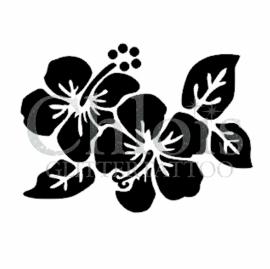 Hibiscus Lux