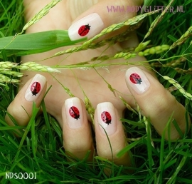 SmART Nails NDS0001 - Lady Bug