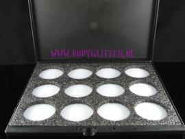 Paradise Makeup AQ Professional Size leeg pallet (12 kleuren)