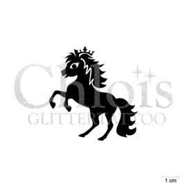 Cute Pony Prince
