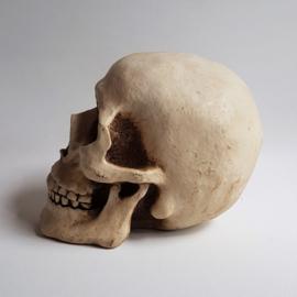 schedel skull spaarpot money bank 1990s