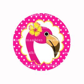 (FB594) Flamingo stip