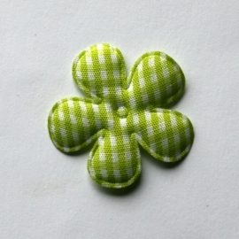 35mm gingham ruit bloem lime groen