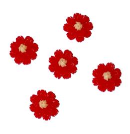 rode bloem flatback 5 stuks