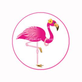 (FB591) Flamingo