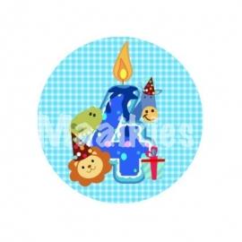 FB333 blauw ruit jarig 4