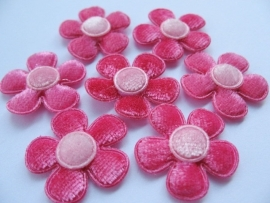 fluweel bloem Fuchsia met roze kern