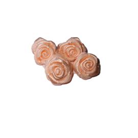 medium roosjes zalm 6 stuks