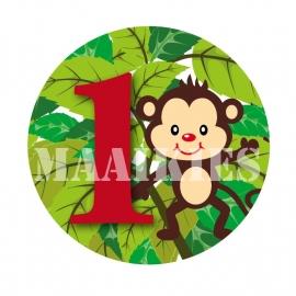 Verjaardags button AAP 1-6 jaar