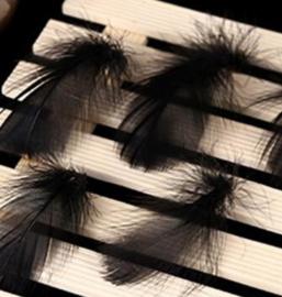 veertjes zwart (4tot 7cm) 4 stuks