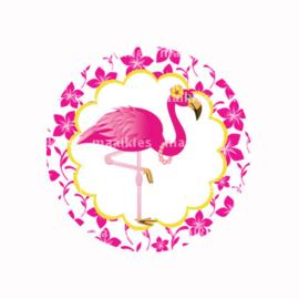 (FB592) Flamingo fuchsia bloem