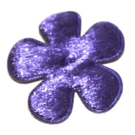 fluweel bloem paars