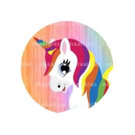 (FB639) unicorn pastel regenboog