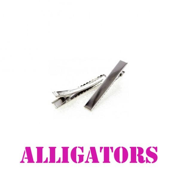 alligators.jpeg