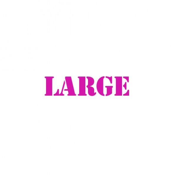 large.jpeg