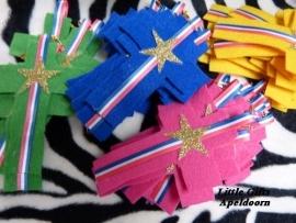Medailles voor de Winnaars van Kids Praise