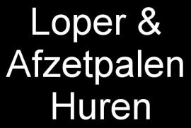 ACTIE:VERHUUR Rode, Paarse of Blauwe LOPER 5x1m.+ 4 Afzetpalen + Koorden