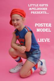1172: Poster Model  Feest van Lieve