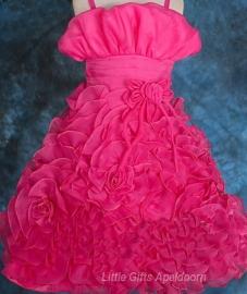 Bijzonder mooie jurken voor Prinsesjes! 9 jaar