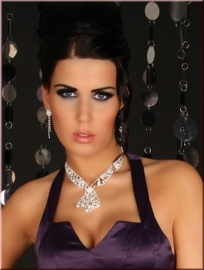 Precious Tie Shape Rhinestone-Necklace and Earrings