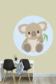 behangcirkel koala