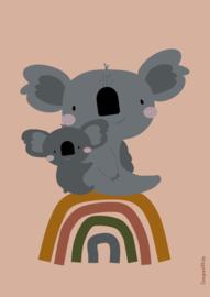 Poster koala op regenboog