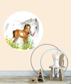 behangcirkel veulen en paard